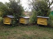 Продаются пчелиные домики